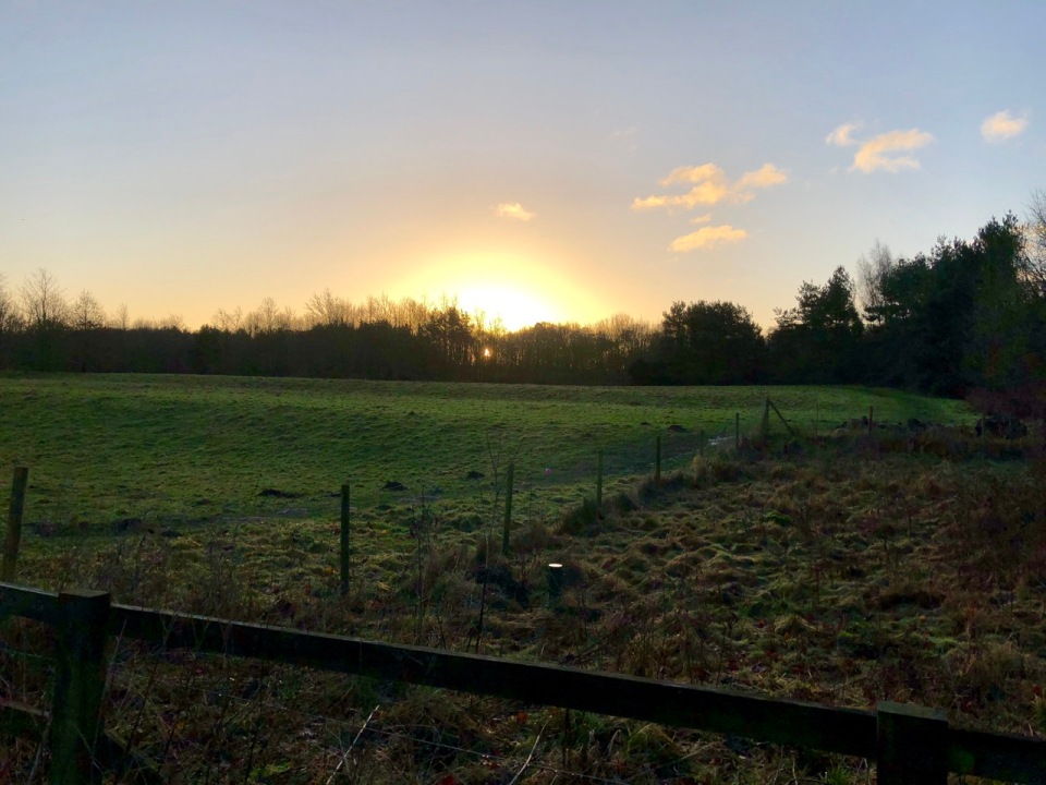 Sunrise near Whittlingham Broad