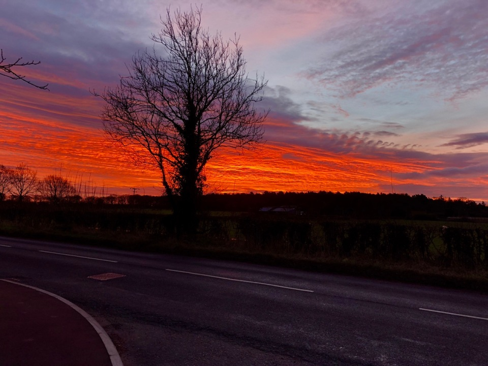 Red sky in the morning, shepherds warning?