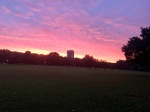 Sunrise in Hyde Park