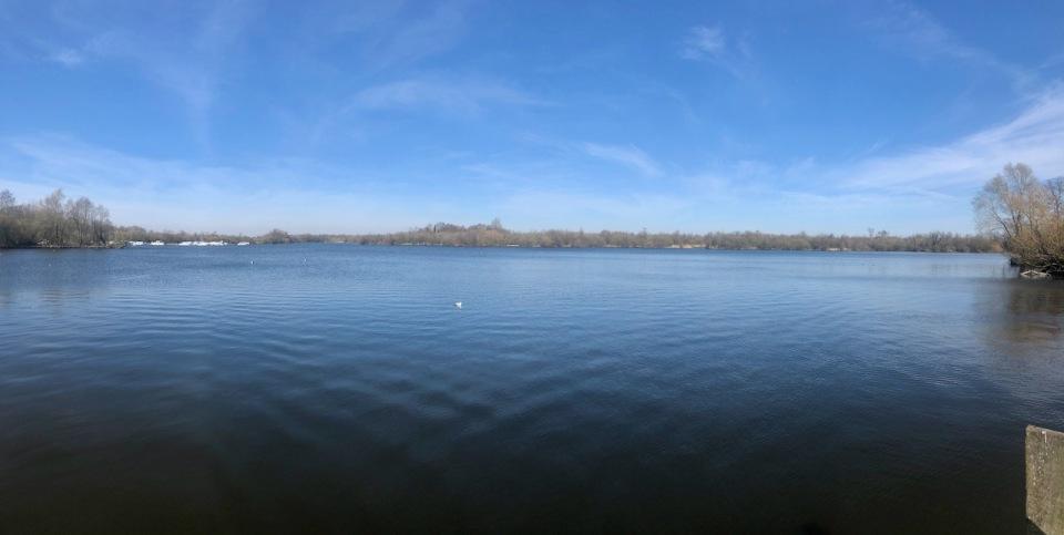 Ranworth Broad - definite lack of boats