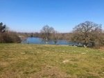 Salhouse Broad - view from the hill