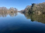 Salhouse Broad - all peaceful and bright