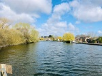 River Bure looking across to Horning