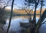 Salhouse Broad about 30 mins before sunset