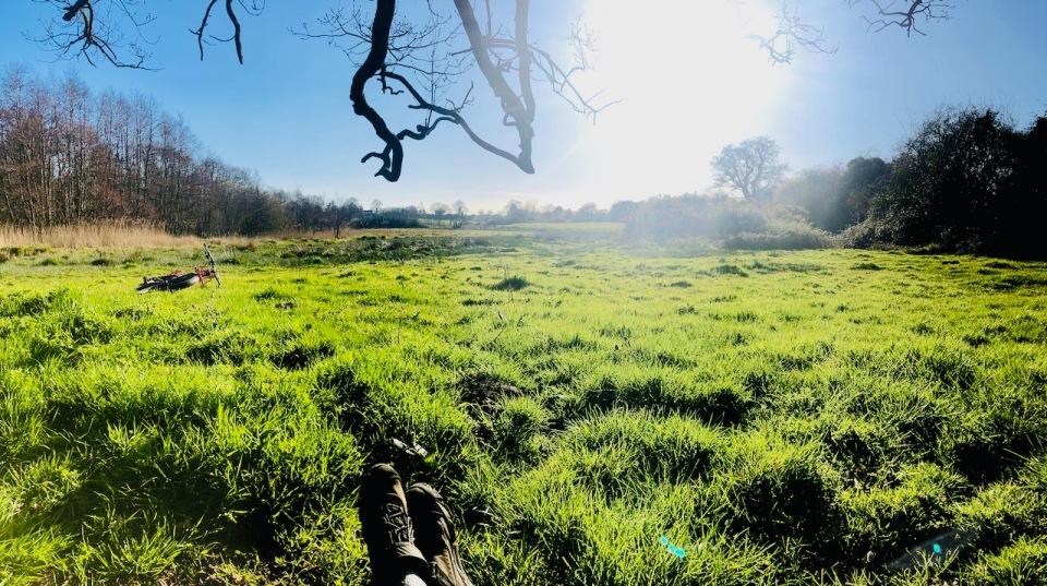 Pausing for a rest under an oak tree