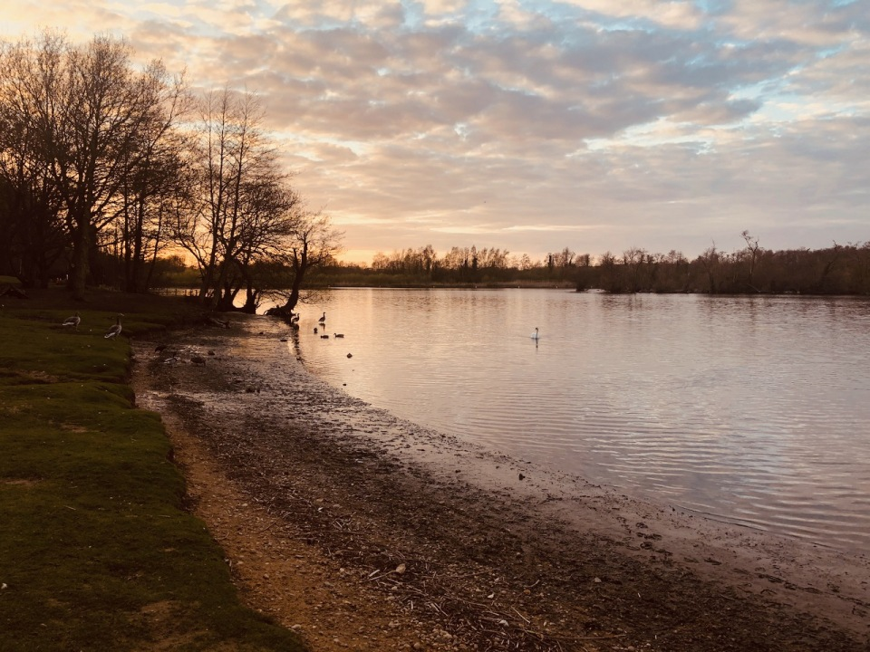 Salhouse Broad in the evening